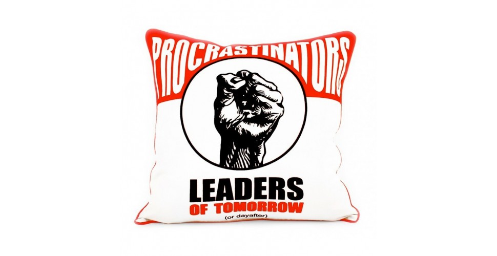 Coussin LEADERS